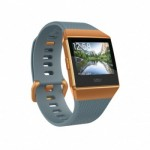 Fitbit Ionic BlueGray/White